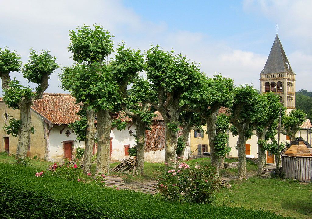 Photography of Chateaux and Vineyards in France